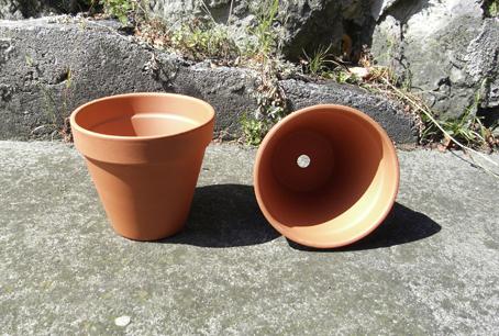 Pot Standard
